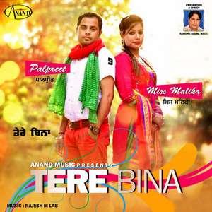 Tere Bina Lyrics Palpreet With Miss Malika – Single
