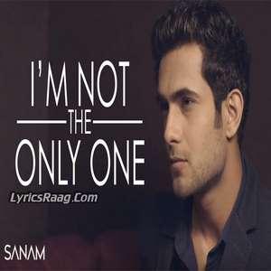I'm Not The Only One Lyrics – Sanam Puri 2015 Single