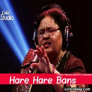 Hare Hare Bans Lyrics – Shazia Manzoor,Rizwan & Muazzam Coke Studio