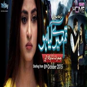 OST Tum Mere Kya Ho Lyrics – Nabeel Shaukat & Shani Arshad | PTV HOME