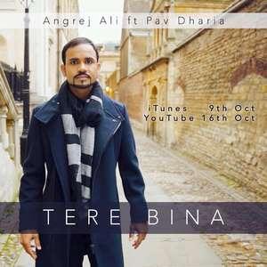 Tere Bina Without You Lyrics – Angrej Ali Ft Pav Dharia Songs