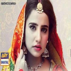 ost-zinda-dargor-lyrics-ahmed-jahanzaib--zinda-dargour-hum-tv-nauman-ejaz-saniya-shamshad-