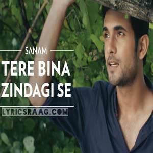 tere-bina-zindagi-se-lyricsmint-sanam-puri-band-2016-songs