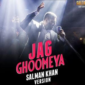 Salman Khan Version Sultan