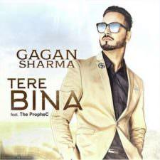 Tere Bina Lyrics – Gagan Sharma Ft The PropheC