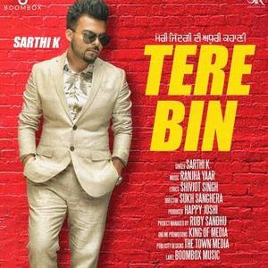 Sarthi K -tere-bin-song
