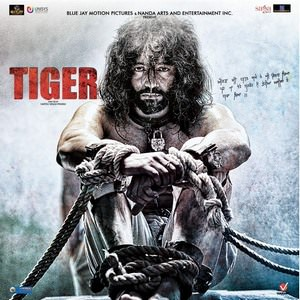 Tiger Sippy Gill (2016)