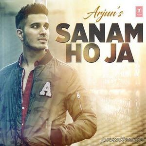 sanam-hoja-arjun-song-lyric