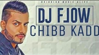 Chibb Kadd (Full Song) - DJ Flow
