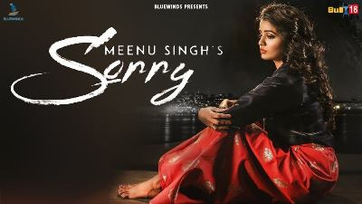 SORRY LYRICS - Meenu Singh