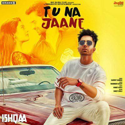 Tu Na Jaane (From Ishqaa) (by Harrdy Sandhu & Money Aujla)