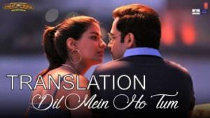 dil mein ho tum translation