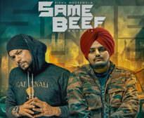 Same Beef Meaning in Hindi and Punjabi