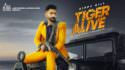 Tiger Alive song Sippy Gill