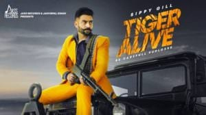 Tiger Alive Lyrics – Sippy Gill | Punjabi Song