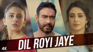 Dil Royi Jaye Lyrics – Hindi Song | De De Pyaar De