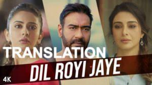 Dil Royi Jaye translation De De Pyaar De