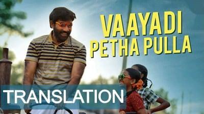 Kanaa - Vaayadi Petha Pulla lyrics meaning