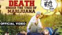 mukhmantri Death Under The Tree Of Marijuana lyrics