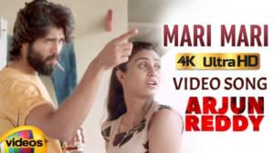 Mari Mari Lyrics Meaning | Arjun Reddy | Gowthami