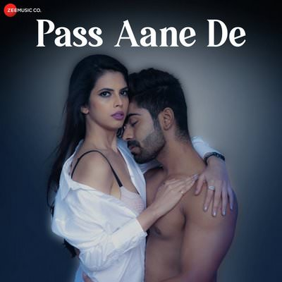 Pass Aane De lyrics by Altaaf Sayyed
