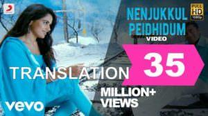Nenjukkul Peidhidum Lyrics (with Translation) | Vaaranam Aayiram