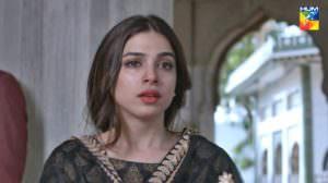 Ishq Zahe Naseeb Lyrics | Drama OST | Hum TV | Sonya Hussain