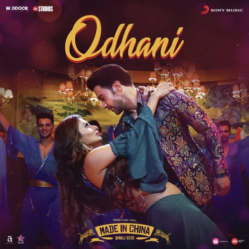 Odhani-From-Made-in-China--Hindi translation lyrics