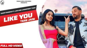 Like You (Tere Jaisi) Lyrics – Garry Sandhu feat. Manpreet Toor