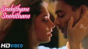 Snehidhane lyrics translation Alaipayuthey