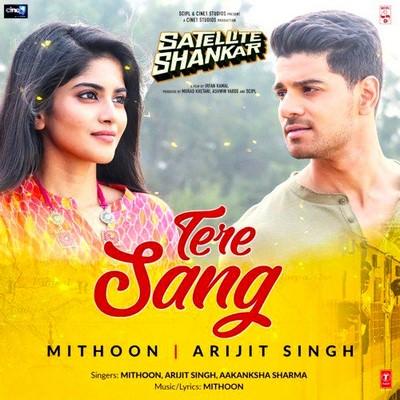 Tere Sang (From Satellite Shankar) hindi lyrics