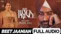 Satinder Sartaaj Beet Jaanian Extended Version janiya lyrics