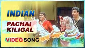 Pachai Kiligal Lyrics (with Meaning) | Kamal Haasan | Indian Movie