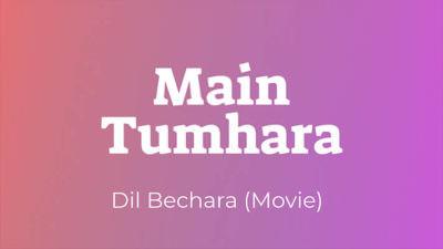 Main Tumhara Dil Bechara lyrics English translation
