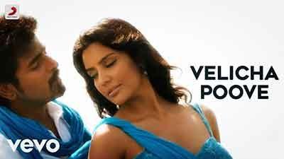 Velicha Poove Lyrics Translation – Ethir Neechal
