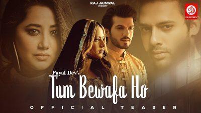 Tum Bewafa Ho Lyrics – Payal Dev, Stebin Ben